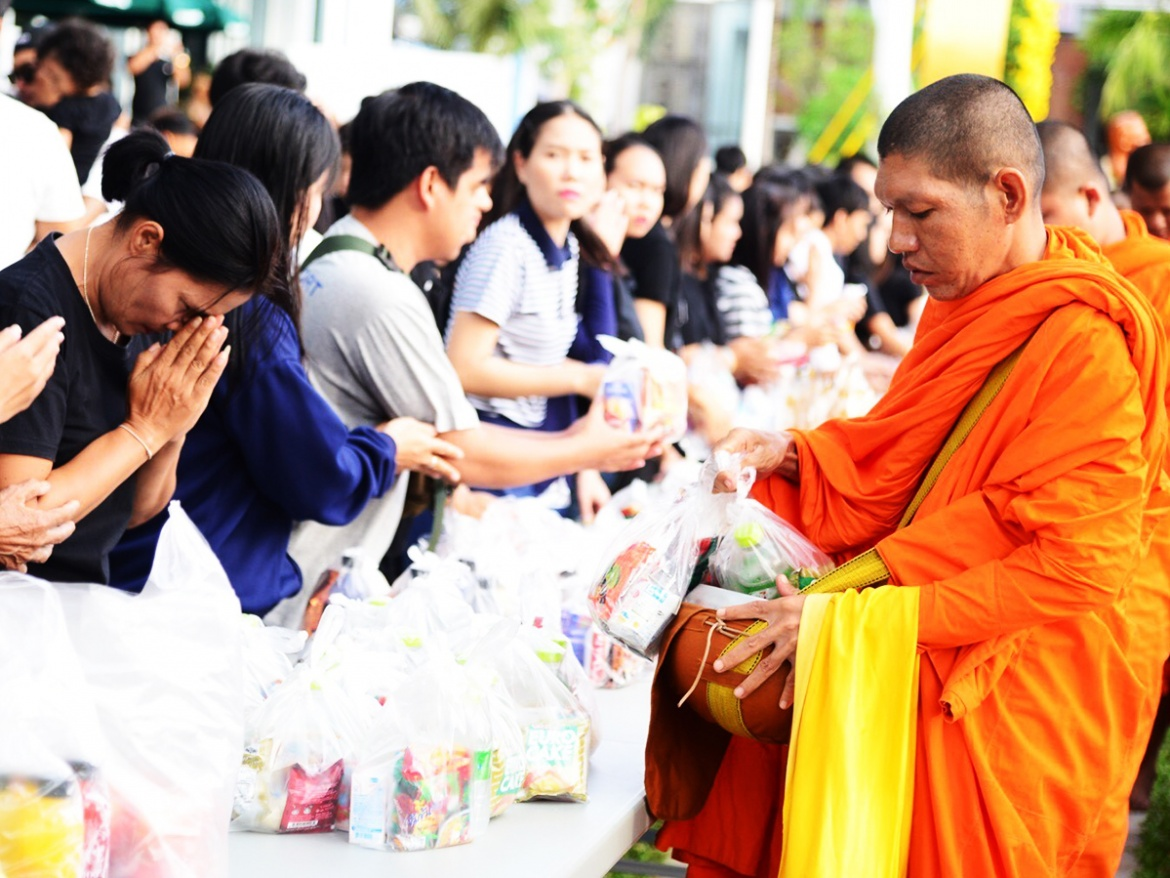 ONE DAY ARM OFFERING TO MONK + ELEPHANT SANCTUARY ( NO RIDING ) + CHIANG MAI CITY TEMPLES.