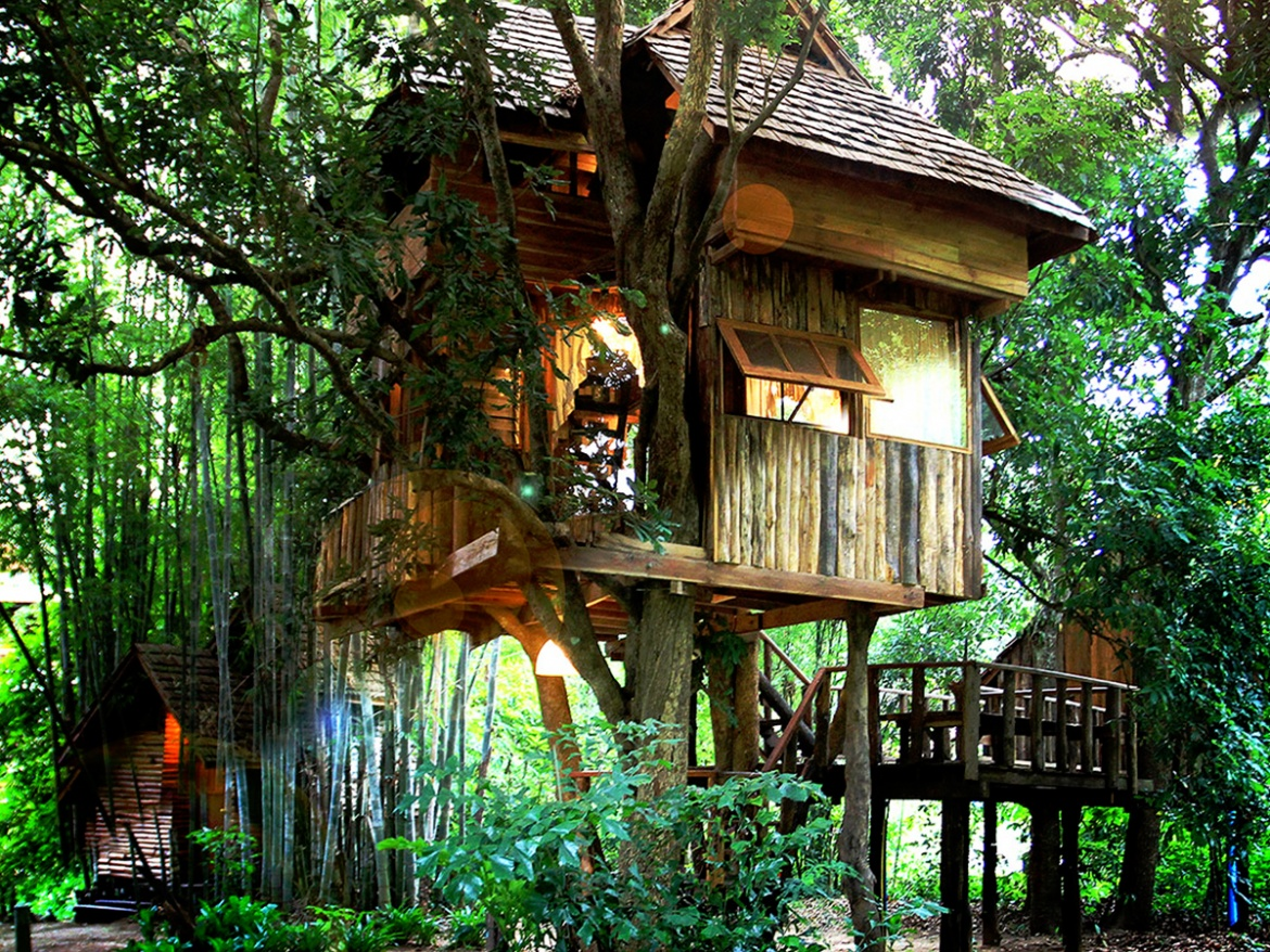 2 Day 1 Night Tree House Village + Elephant Sanctuary ( NO RIDE ) + Bamboo Rafting + Long Neck Viillage + Trekking to Waterfall and Tiger Kingdom.